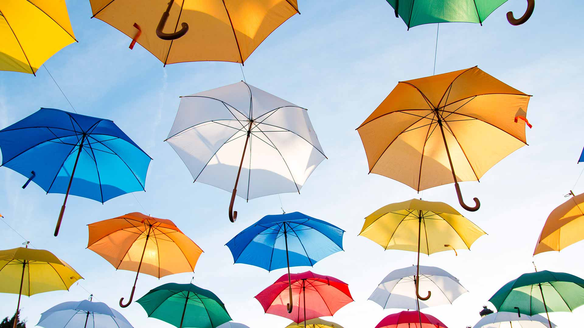 NDIS Provider Insurance: A collection of coloured umbrellas float up into the sky.